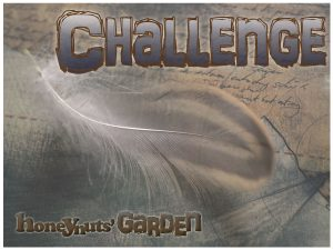 challenge2a
